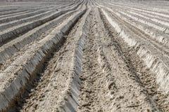 Terra Ploughed Foto de Stock Royalty Free