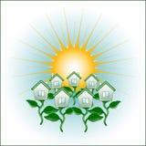 A terra pura em feixes do sol Imagem de Stock Royalty Free