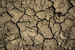 Terra queimada pelo sol Fotos de Stock
