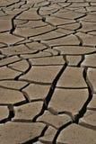 Terra rachada Imagens de Stock