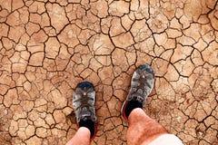 terra rachada Foto de Stock Royalty Free