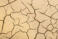 Terra rachada da argila, fundo Fotografia de Stock