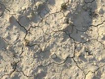 Terra rachada da textura da terra seca da seca do solo Foto de Stock Royalty Free
