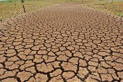 Terra rachada devido à seca Fotografia de Stock Royalty Free