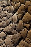 Terra rachada devido ao calor do sol Foto de Stock