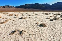 A terra rachada no deserto imagens de stock