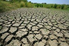 Terra rachada seca com grama sobrevivida Imagem de Stock