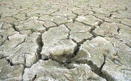 Terra rachada seca que transforma-se um deserto Imagem de Stock