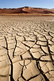 Terra rachada seca - Sossusvlei - Namíbia Imagens de Stock
