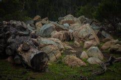 Terra rochosa Fotografia de Stock