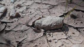 Terra rochosa seca Grande e cinemático super Quebras agradáveis filme