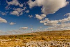 Terra rochosa sob o céu azul - o Burren, Ireland Fotografia de Stock Royalty Free