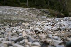 Terra rochoso áspera em uma floresta Foto de Stock