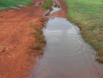 Terra Rossa Road Water Settle fotografia stock