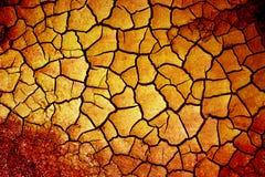 Terra seca Fotos de Stock Royalty Free