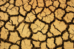 Terra seca Imagens de Stock