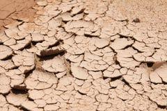Terra seca Imagens de Stock Royalty Free