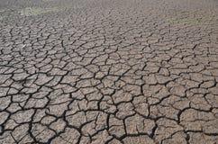 Terra seca Imagem de Stock