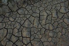 Terra seca Fotografia de Stock