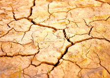 Terra seca Foto de Stock