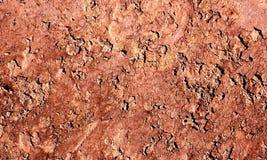 Terra seca Fotografia de Stock Royalty Free