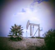 Terra seca Foto de Stock Royalty Free