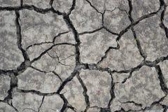 Terra seca Imagem de Stock Royalty Free