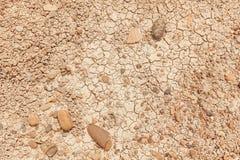 Terra seca com quebras e pedras fotos de stock