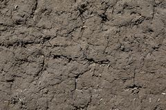 Terra seca da textura Imagens de Stock Royalty Free
