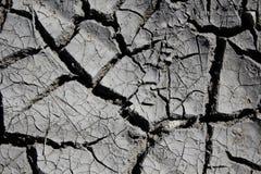 Terra seca (deserto) Imagens de Stock
