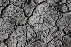 Terra seca (deserto) Fotografia de Stock