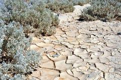Terra seca e rachada no ponto de Zabriskie Imagens de Stock Royalty Free