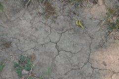 A terra seca e sem água Imagem de Stock
