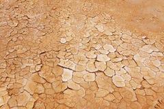 Terra seca, parched fotos de stock royalty free
