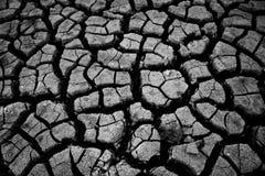 Terra seca, Parched Fotografia de Stock