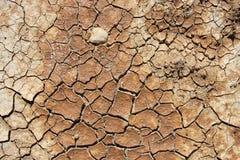 Terra seca, rachada Fotos de Stock
