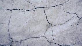 Terra seca rachada em um deserto vídeos de arquivo