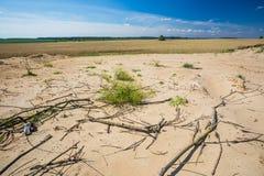 Terra secada perto dos campos Fotografia de Stock Royalty Free