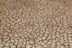 Terra secca che soffre dalla siccità fotografie stock libere da diritti