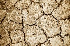 Terra secca con il reticolo incrinato Fotografia Stock Libera da Diritti
