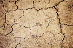 Terra seccata Fotografie Stock