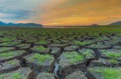 A terra secco con struttura dell'erba verde durante il tramonto Fotografie Stock Libere da Diritti