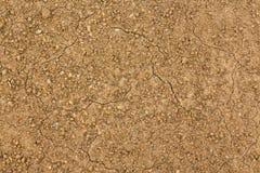 Terra semeada rachada seca Fotos de Stock Royalty Free