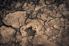 Terra senz'acqua Fotografia Stock