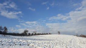 Terra soleggiata della neve del paesaggio Immagini Stock Libere da Diritti