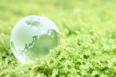 Terra su erba Fotografia Stock Libera da Diritti