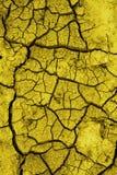 Terra textured rachada Imagens de Stock Royalty Free
