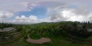 Terra tropicale dell'azienda agricola del paesaggio in Indonesia vr360 archivi video