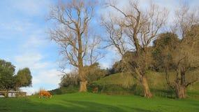 Terra verde di bellezza Fotografie Stock Libere da Diritti