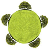 Terra verde e árvore isoladas no fundo branco Imagens de Stock Royalty Free